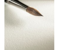 "Hahnemuhle Бумага для акварели ""Expression"", 300 г/м2, 50х65 см, 100% хлопок, 10 л ,среднее зерно"